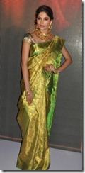Parvathy Omanakuttan _cute_in_saree_pic