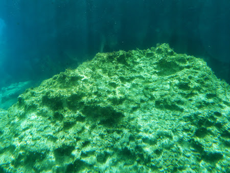 La mare in Cipru: Imagini submarine
