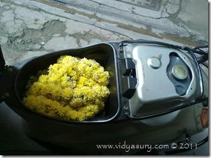 VidyaSury Nobag