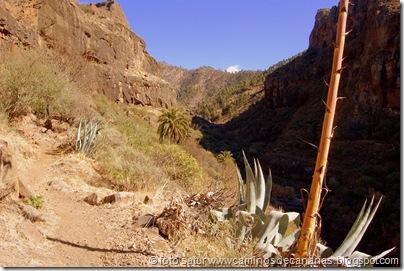3621 Taiguy-El Juncal