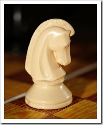 Chess knight. Photo: Petr Novák, Wikipedia