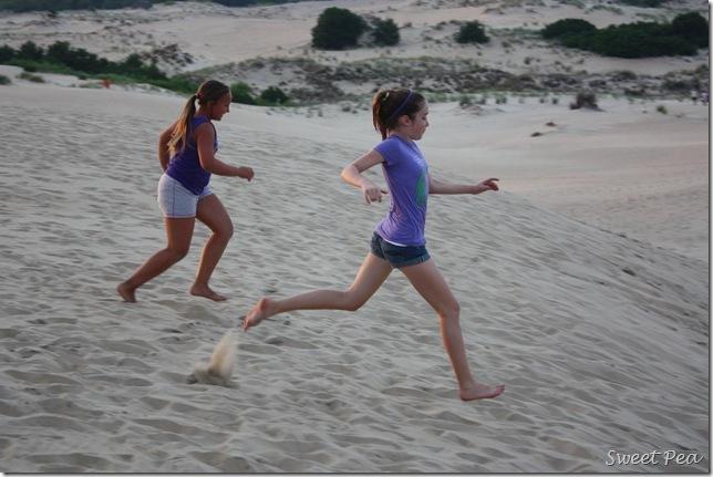 Beach Dunes3