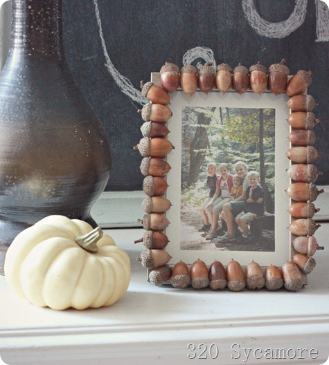Another awesome fall acorn DIY - this time with whole acorns used to make the frame! Best part is acorns are totally free! All you have to do is pick them up!