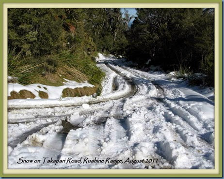 Snow on Takapari Road, 2011