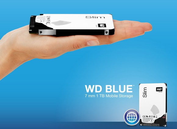 Western Digital Blue Hard Drive Selling Price PHP 6990