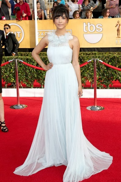Hannah Simone attends the 20th Annual Screen Actors Guild Awards