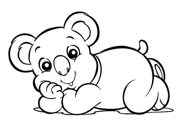 Dibujos De Koalas Para Colorear