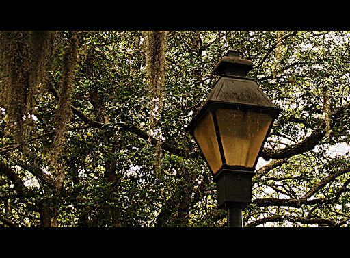 Lampost in Savannah