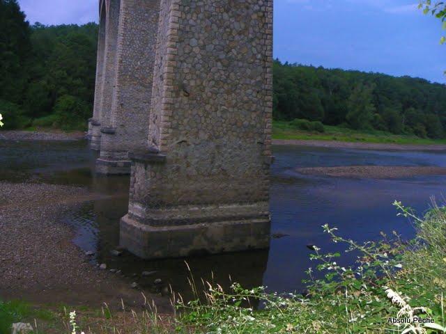 Loire à l'embouchure de l'Aix photo #385