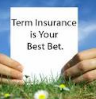 Term Insurance is Best