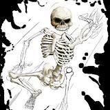 esqueletommmm.jpg