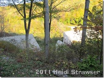 fall 2011 038