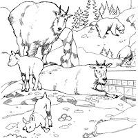 animaatjes-dierentuin-42633.jpg