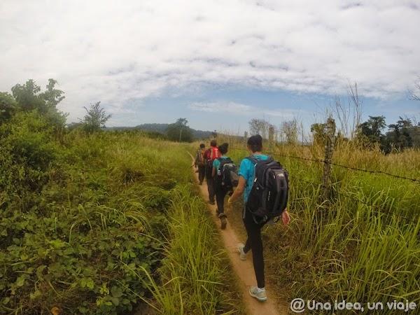 camboya-tekking-jungla-chi-phat-ecoturismo-unaideaunviaje.com-3.jpg