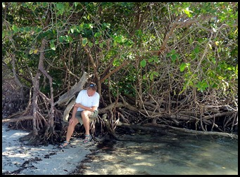 5b10 - Tour - Coral Cove - Syl on Mangroves