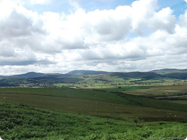 cheviots from dod law