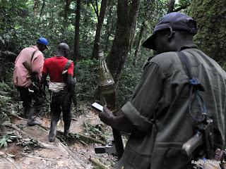 Des rebelles des FDLR (Forces démocratiques pour la libération du Rwanda) dans la forêt de Pinga dans l'Est de la RDC le 06/02/2009. Radiookapi.net