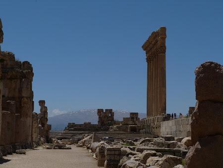 Imagini Liban: Curtea Sacrificiilor