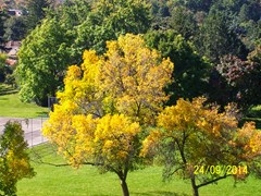 2014-09-24  Fall Colour