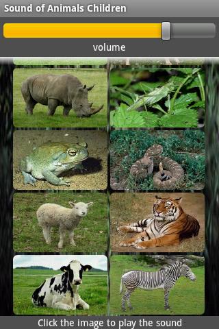 玩免費教育APP|下載動物叫聲 app不用錢|硬是要APP