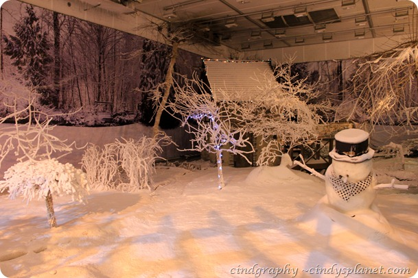 4 season house winter