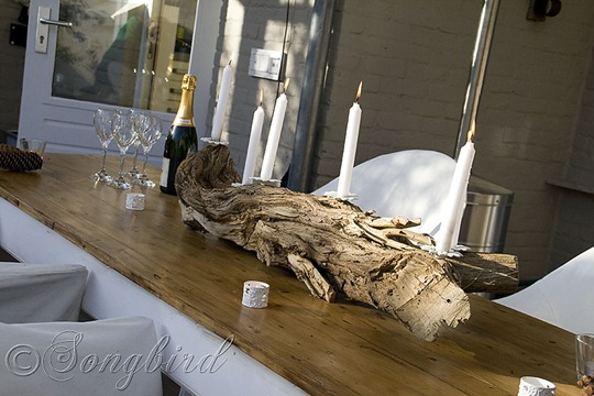 Tree Trunk Candle Stick 6