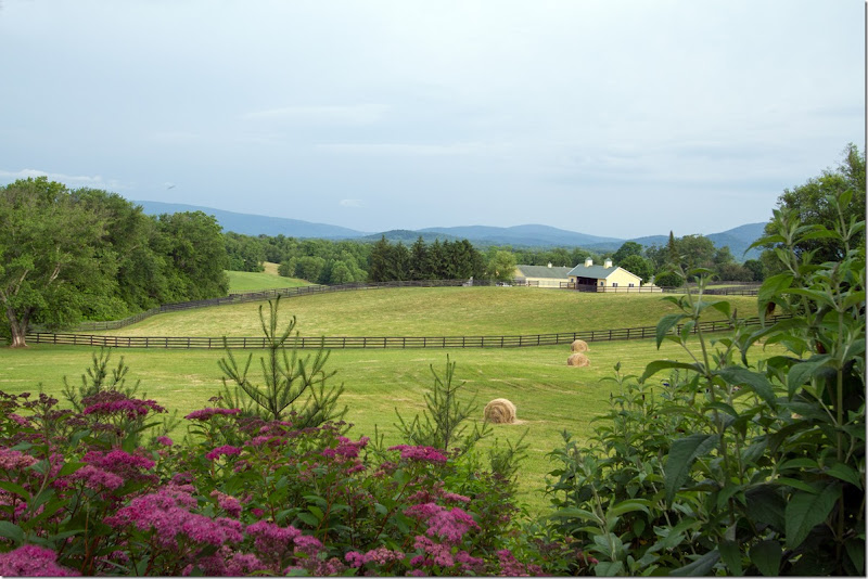 Blue Ridge Views - Copy (2)