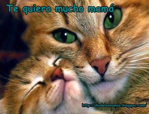 te quiero mama 2