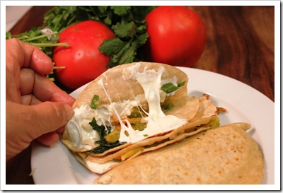 Squash Blossoms Quesadillas | enjoy this traditional recipe with a step by step photo tutorial.
