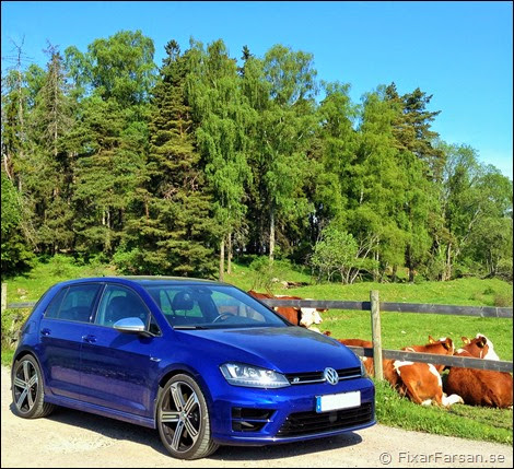 Test-Golf-R-DSG-Lapiz-Blue