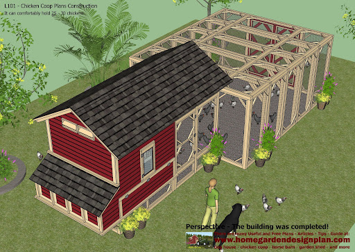 1 How To Chicken Coop Apartment Guide Knoxville Tn 56673 Surofteryer