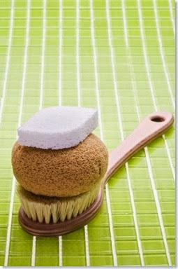 pumice stone bath brush