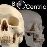 OpenLab.bones 2.0 Icon