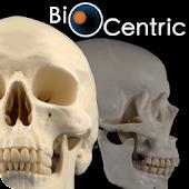 OpenLab.bones