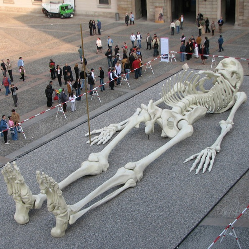 Calamita Cosmica: The Giant Travelling Skeleton
