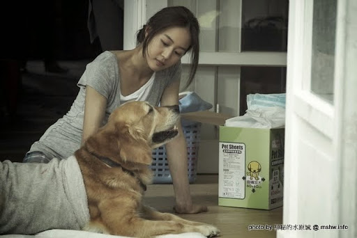【電影】One Minute More 只要一分鐘 : 子欲養而犬不待,一對情侶養狗的故事... 電影