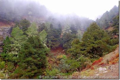 6853 Barranco Andén-Cueva Corcho(Barranco Crespo)