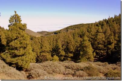 3365 Cueva Grande-Llanos Pez