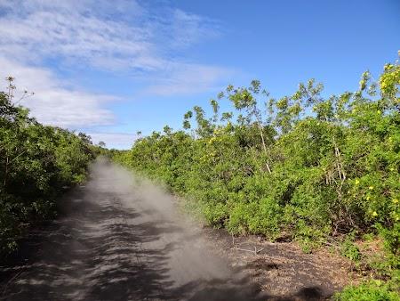 03. In drum spre Cerro Negro.JPG