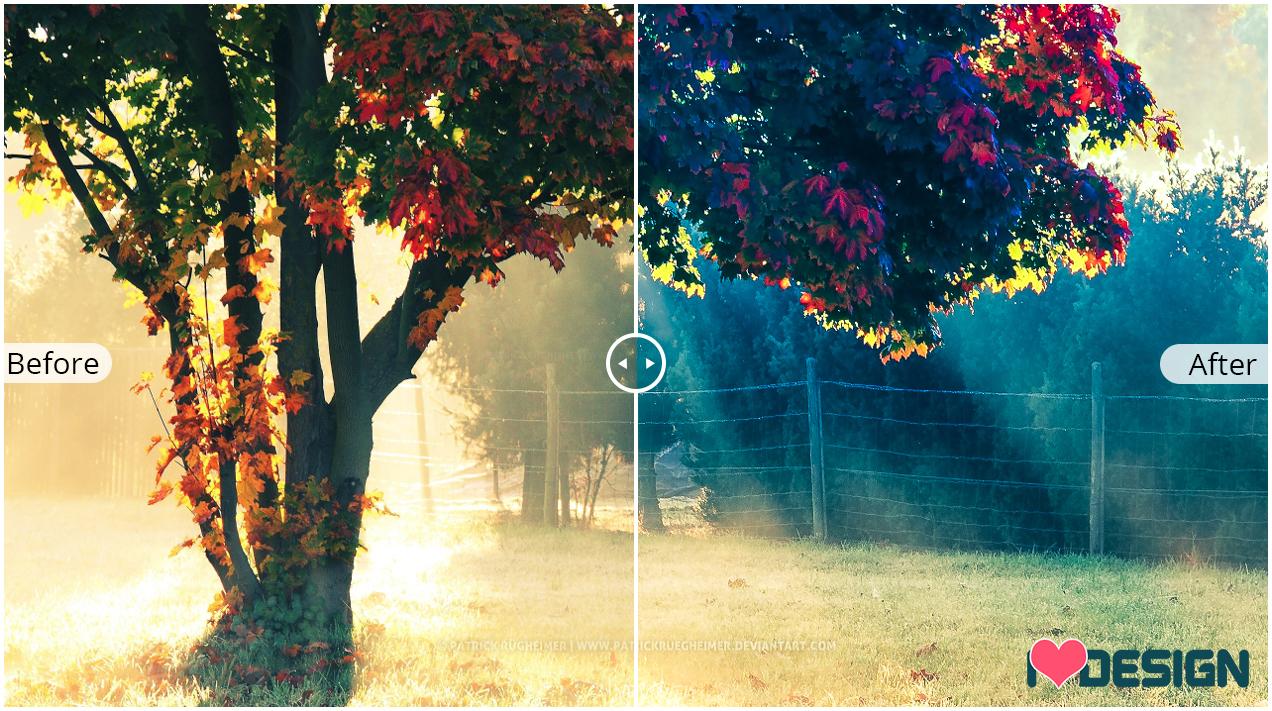 Chia sẻ bộ 70 presets Lightroom mùa thu, màu sáp nhiều tone màu tuyệt đẹp