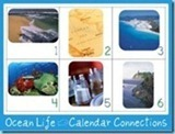 OCean-Life-Calendar-Connections34226