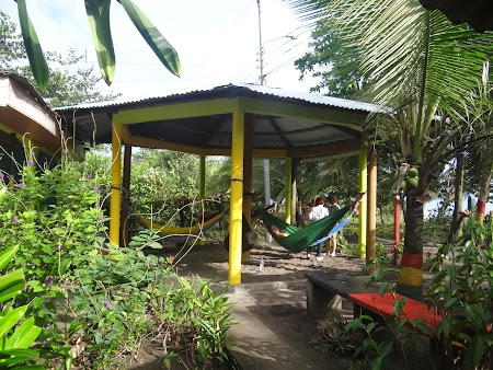 07. Hamace in Caraibe.JPG