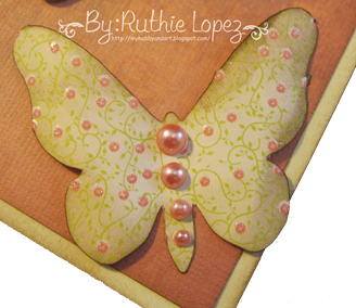 Butterfly svg Platypus Creek Digitals 1