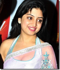 poonam_kaur_in_saree_cute_photo