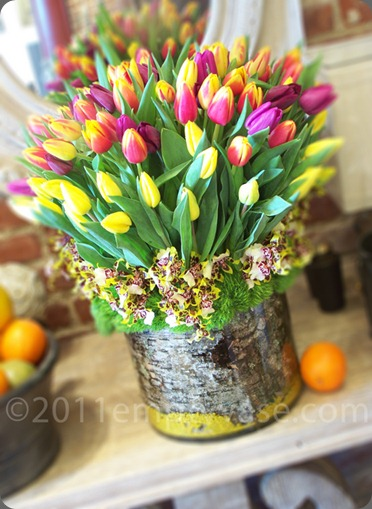 50 multi-colored tulips, intricate tiger orchids and dianthus moss empty vase