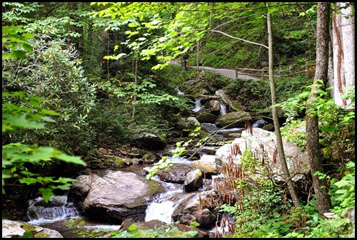 25d - Anna Ruby Falls Trail - Path goes up along the creek flowing down