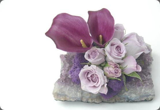 182970_199045126788075_159860124039909_760381_7373387_n  seed floral
