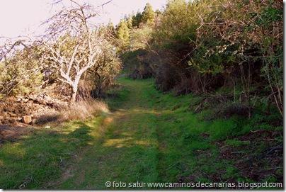 3340 Cueva Grande-Llanos Pez