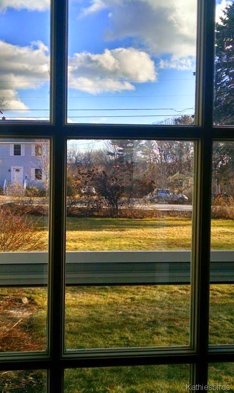 4. window view 12-29-14 cell pic