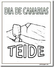 DIA CANARIA TEIDE 1